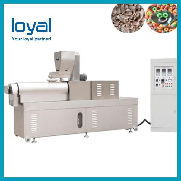 Automatic Twin Screw Extruder Sugar Coated Crunchy Corn Flakes Cereal Processing Equipment #3 image