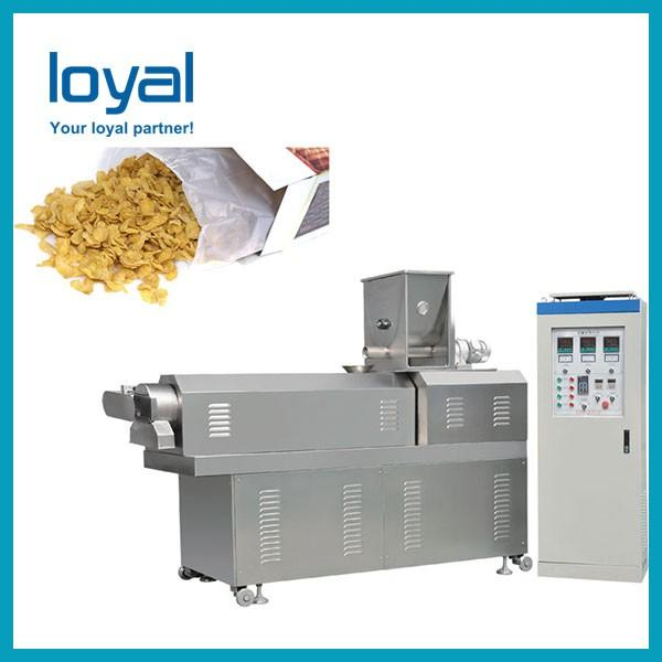 Automatic Twin Screw Extruder Sugar Coated Crunchy Corn Flakes Cereal Processing Equipment #2 image