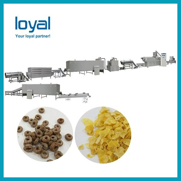Small capacity corn pops cereal making machine extruder corn flakes production equipments #3 image